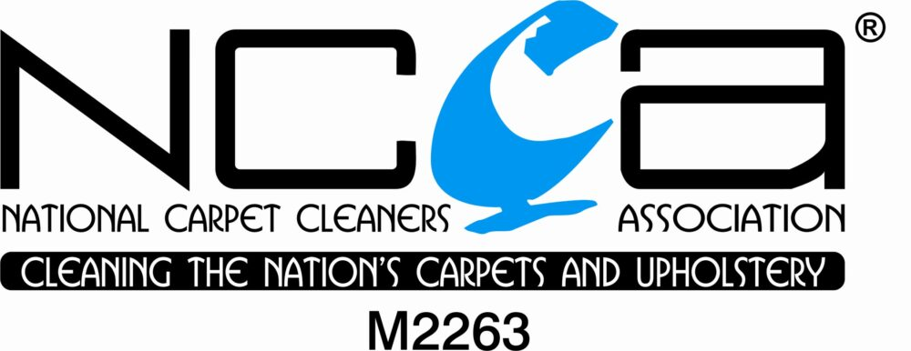 , Carpet Cleaning