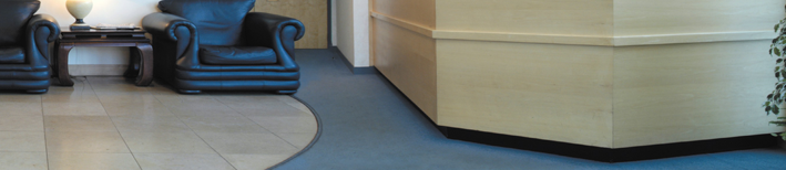 Reception Carpet